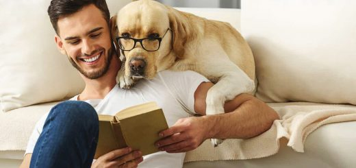 triada escoger mejor mascota para tu departamento en Lima