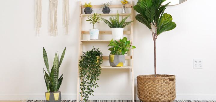 triada tener plantas departamento
