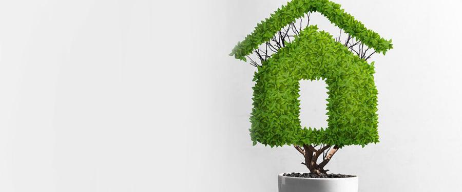 bono verde como acceder a este beneficio sostenibilidad